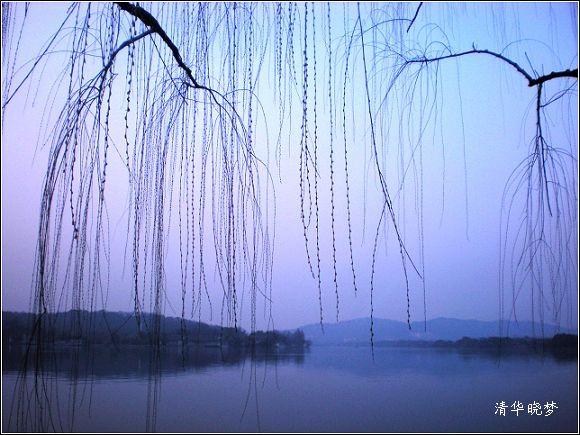 一湖春柳一湖诗