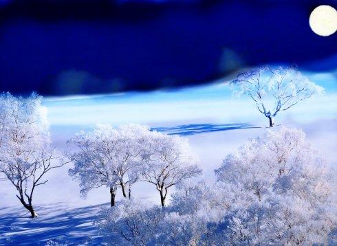 月光滢雪(组诗)