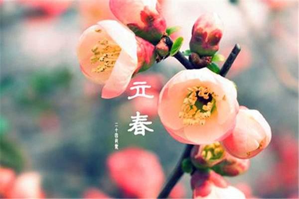 春天里的使者