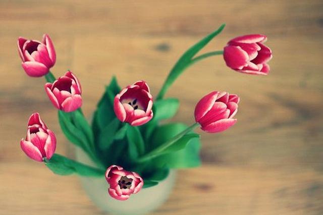三月,静听爱情发芽的声音(散文诗组)