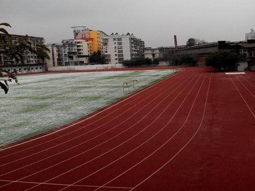 暑假 清晨我在学校运动场读书