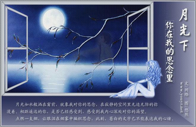 月光下,你在我的思念里